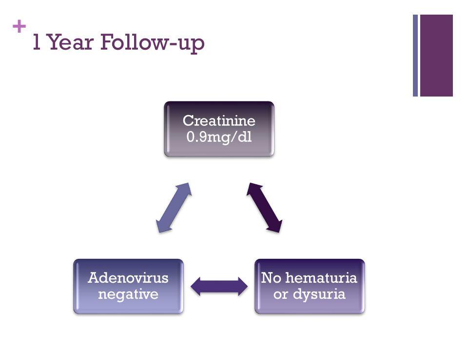 + 1 Year Follow-up Creatinine 0.9mg/dl No hematuria or dysuria Adenovirus negative