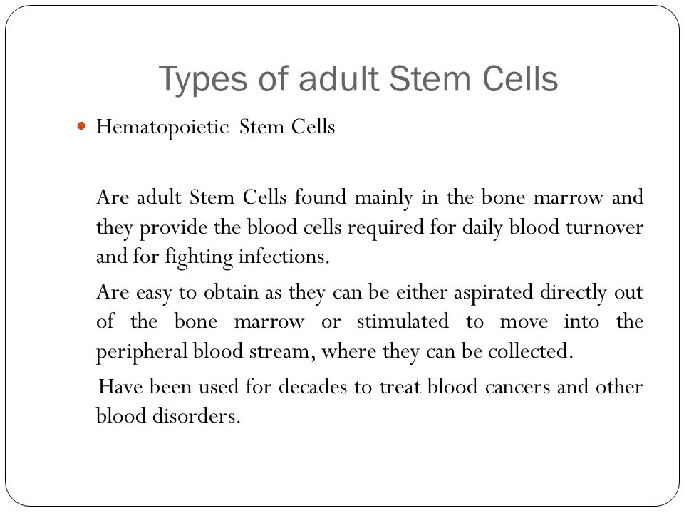 Types of adult Stem Cells Hematopoietic Stem Cells Are adult Stem Cells found mainly in the bone marrow and they provide the blood cells required for daily blood turnover and for fighting infections.