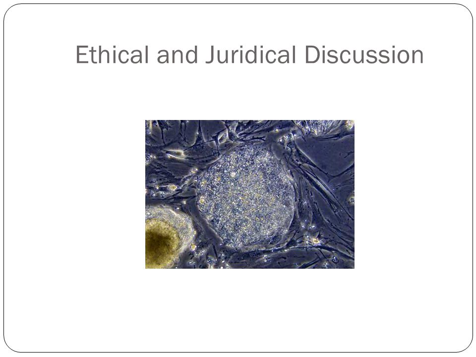 Ethical and Juridical Discussion