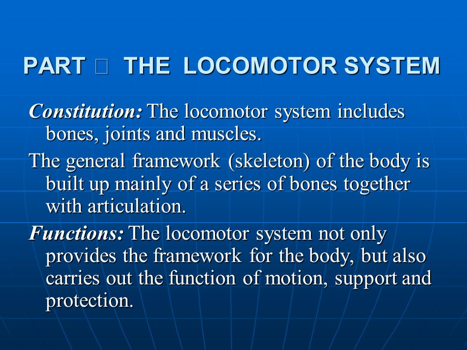 PART Ⅰ THE LOCOMOTOR SYSTEM Constitution: The locomotor system includes bones, joints and muscles. The general framework (skeleton) of the body is bui
