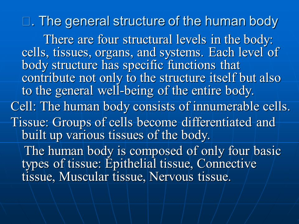 Ⅱ. The general structure of the human body There are four structural levels in the body: cells, tissues, organs, and systems. Each level of body struc