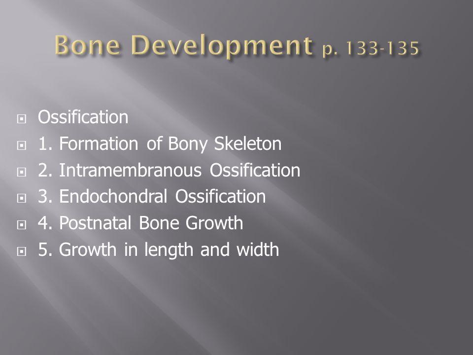  Ossification  1.Formation of Bony Skeleton  2.