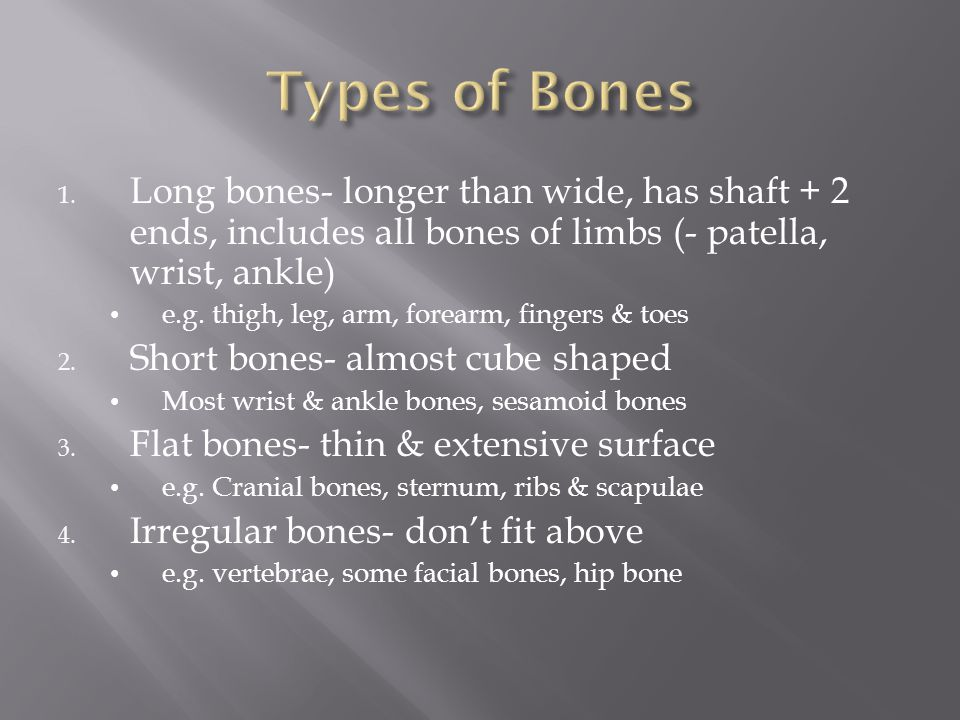 1. Long bones- longer than wide, has shaft + 2 ends, includes all bones of limbs (- patella, wrist, ankle) e.g. thigh, leg, arm, forearm, fingers & to