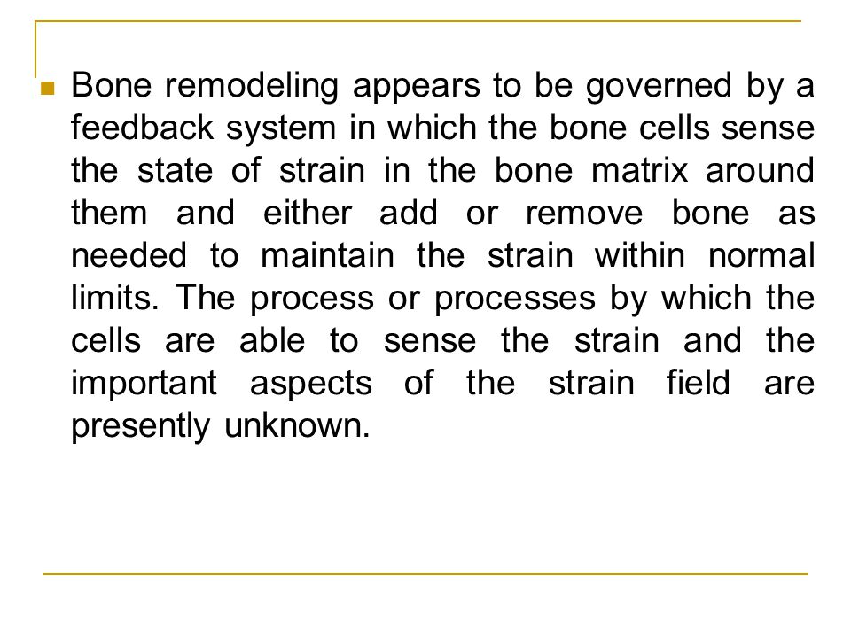 Bone remodeling appears to be governed by a feedback system in which the bone cells sense the state of strain in the bone matrix around them and either add or remove bone as needed to maintain the strain within normal limits.