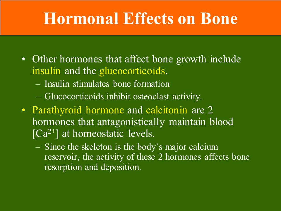 Hormonal Effects on Bone Other hormones that affect bone growth include insulin and the glucocorticoids.