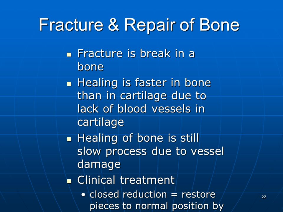22 Fracture & Repair of Bone Fracture is break in a bone Fracture is break in a bone Healing is faster in bone than in cartilage due to lack of blood vessels in cartilage Healing is faster in bone than in cartilage due to lack of blood vessels in cartilage Healing of bone is still slow process due to vessel damage Healing of bone is still slow process due to vessel damage Clinical treatment Clinical treatment closed reduction = restore pieces to normal position by manipulationclosed reduction = restore pieces to normal position by manipulation open reduction = surgeryopen reduction = surgery