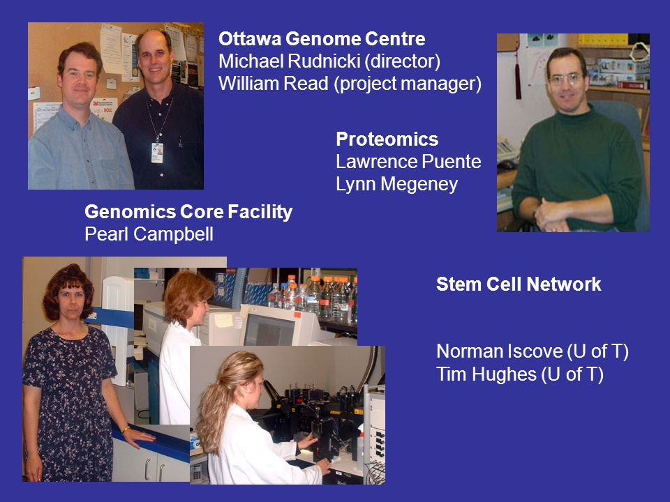 Proteomics Lawrence Puente Lynn Megeney Genomics Core Facility Pearl Campbell Ottawa Genome Centre Michael Rudnicki (director) William Read (project manager) Stem Cell Network Norman Iscove (U of T) Tim Hughes (U of T)