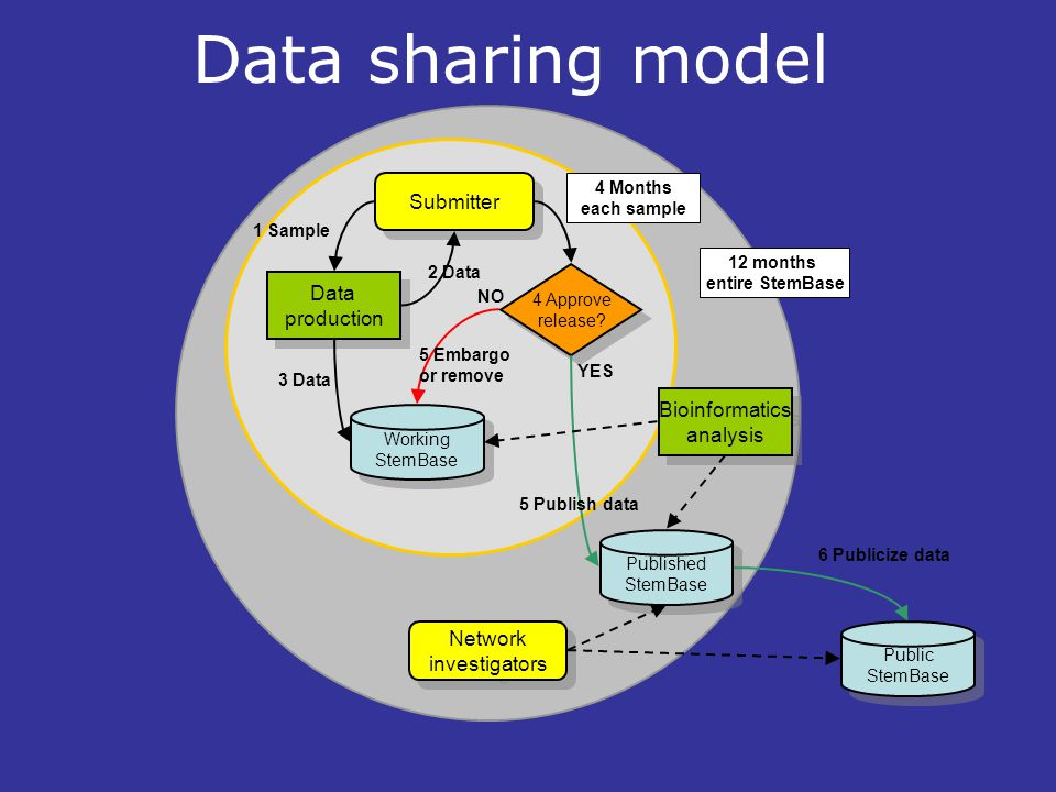 Working StemBase Working StemBase Published StemBase Published StemBase Public StemBase Public StemBase Data production Data production Bioinformatics