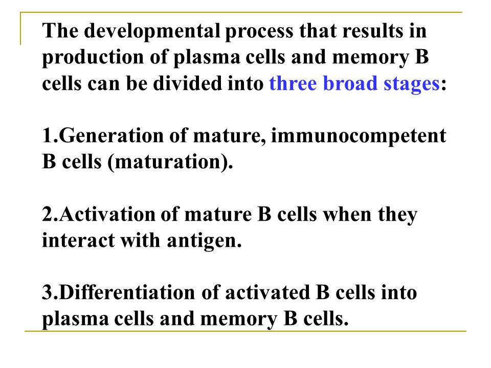 The developmental process that results in production of plasma cells and memory B cells can be divided into three broad stages: 1.Generation of mature, immunocompetent B cells (maturation).