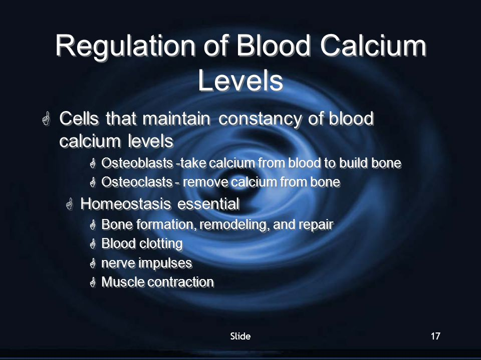 Slide17 Regulation of Blood Calcium Levels  Cells that maintain constancy of blood calcium levels  Osteoblasts -take calcium from blood to build bon