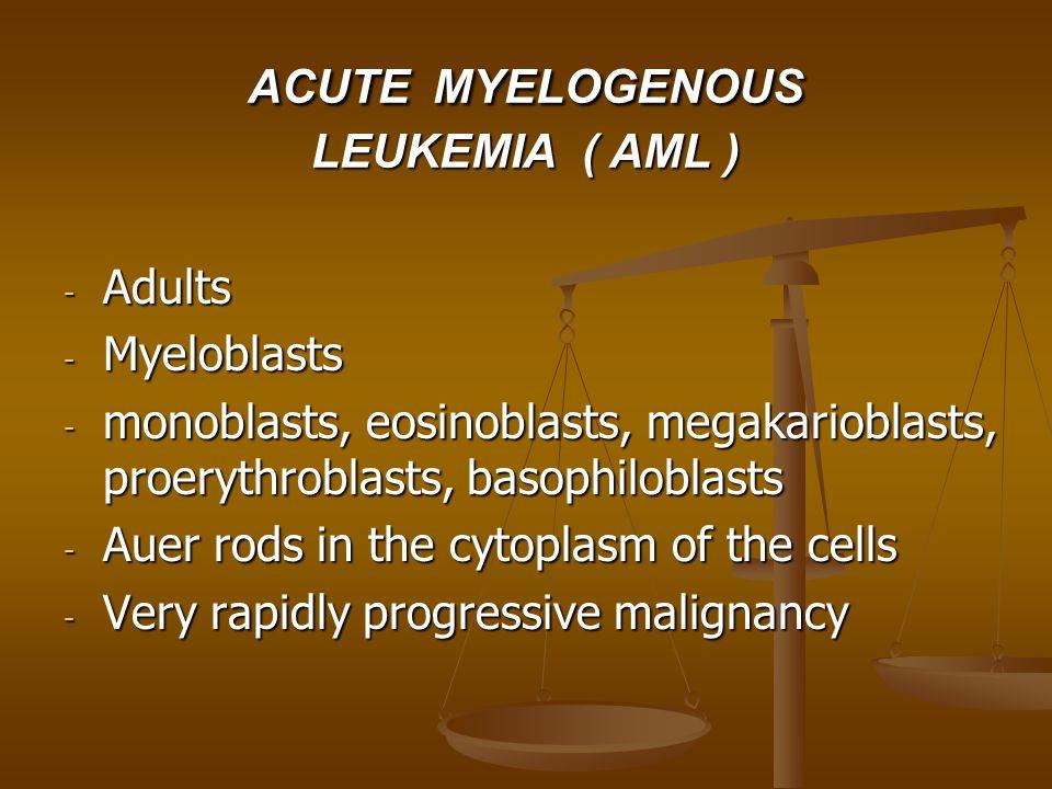 ACUTE MYELOGENOUS LEUKEMIA ( AML ) - Adults - Myeloblasts - monoblasts, eosinoblasts, megakarioblasts, proerythroblasts, basophiloblasts - Auer rods in the cytoplasm of the cells - Very rapidly progressive malignancy