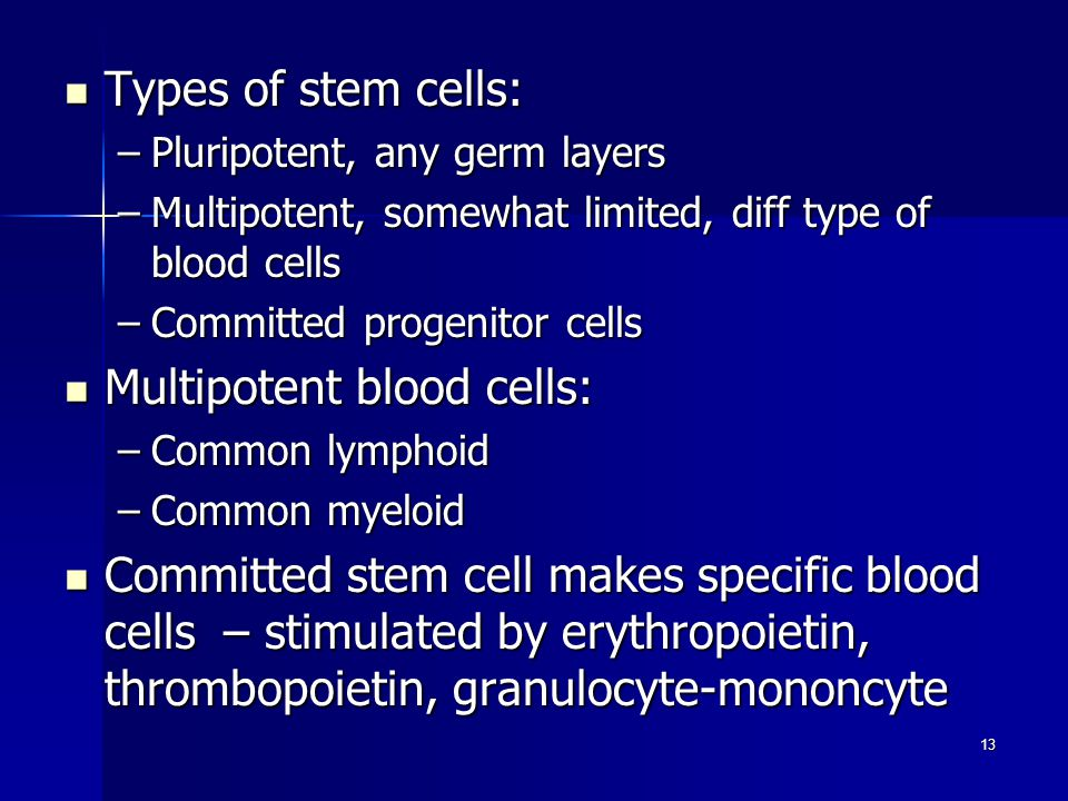 Types of stem cells: Types of stem cells: –Pluripotent, any germ layers –Multipotent, somewhat limited, diff type of blood cells –Committed progenitor cells Multipotent blood cells: Multipotent blood cells: –Common lymphoid –Common myeloid Committed stem cell makes specific blood cells – stimulated by erythropoietin, thrombopoietin, granulocyte-mononcyte Committed stem cell makes specific blood cells – stimulated by erythropoietin, thrombopoietin, granulocyte-mononcyte 13