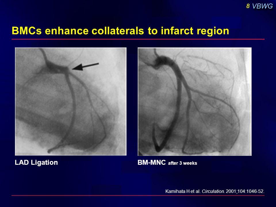 8 Kamihata H et al. Circulation. 2001;104:1046-52. LAD LigationBM-MNC after 3 weeks BMCs enhance collaterals to infarct region