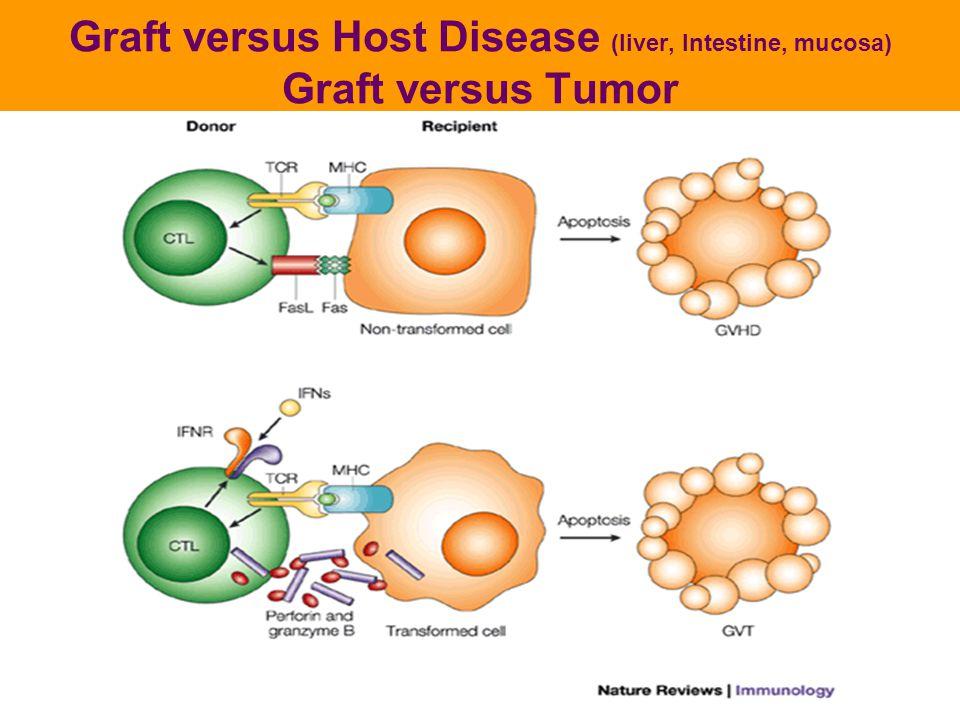 Graft versus Host Disease (liver, Intestine, mucosa) Graft versus Tumor