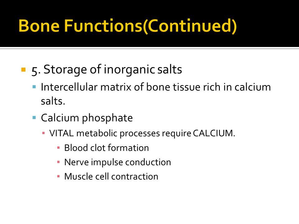  5. Storage of inorganic salts  Intercellular matrix of bone tissue rich in calcium salts.