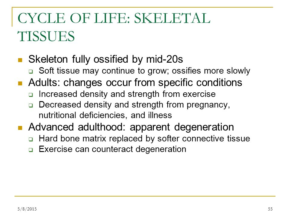 5/8/201555 CYCLE OF LIFE: SKELETAL TISSUES Skeleton fully ossified by mid-20s  Soft tissue may continue to grow; ossifies more slowly Adults: changes occur from specific conditions  Increased density and strength from exercise  Decreased density and strength from pregnancy, nutritional deficiencies, and illness Advanced adulthood: apparent degeneration  Hard bone matrix replaced by softer connective tissue  Exercise can counteract degeneration