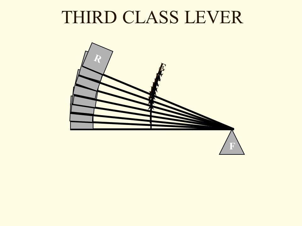 THIRD CLASS LEVER F R E R E R E R E R E E R R E R E