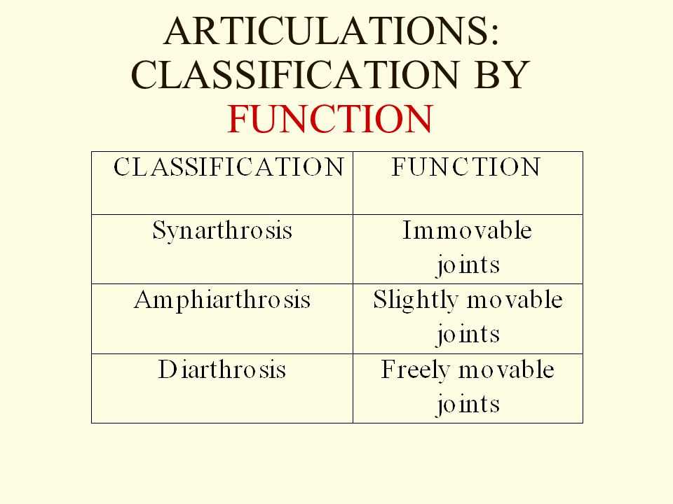 ARTICULATIONS: CLASSIFICATION BY FUNCTION