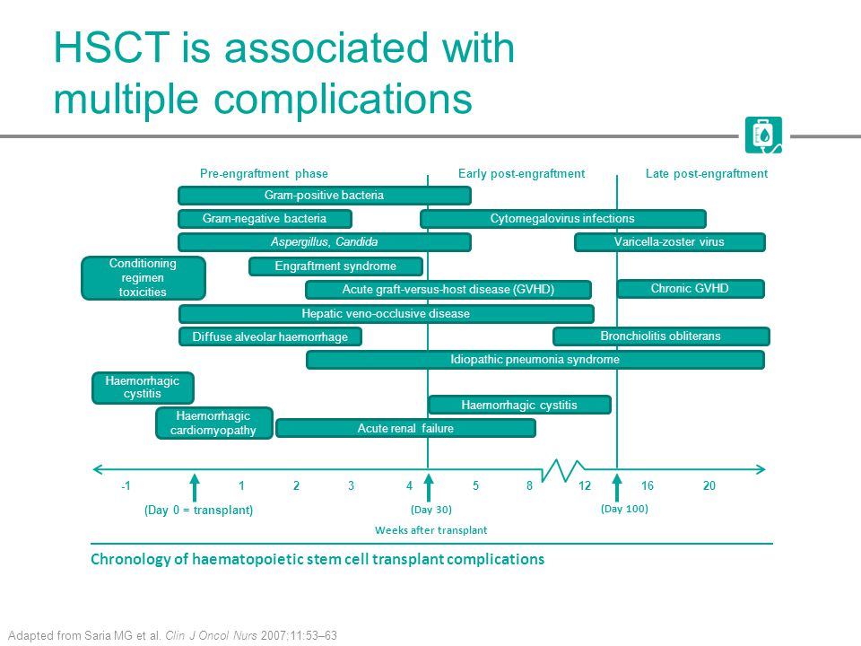 HSCT is associated with multiple complications Adapted from Saria MG et al.