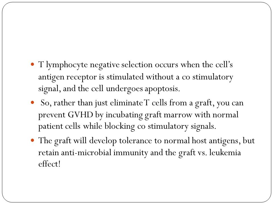 T lymphocyte negative selection occurs when the cell's antigen receptor is stimulated  without a co stimulatory signal, and the cell undergoes apopto