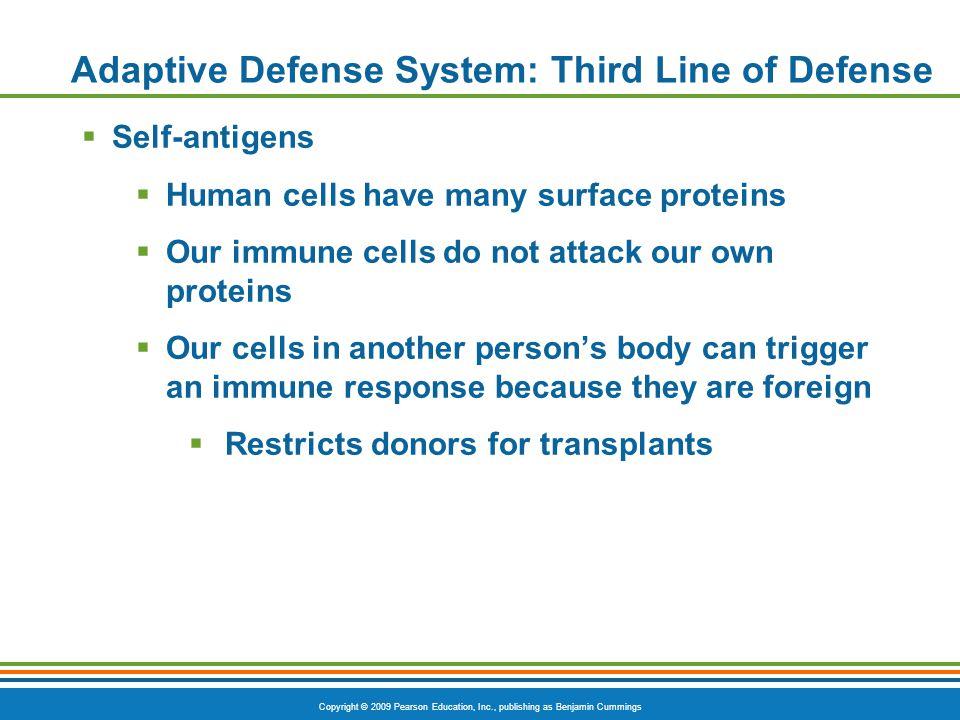 Copyright © 2009 Pearson Education, Inc., publishing as Benjamin Cummings Adaptive Defense System: Third Line of Defense  Self-antigens  Human cells