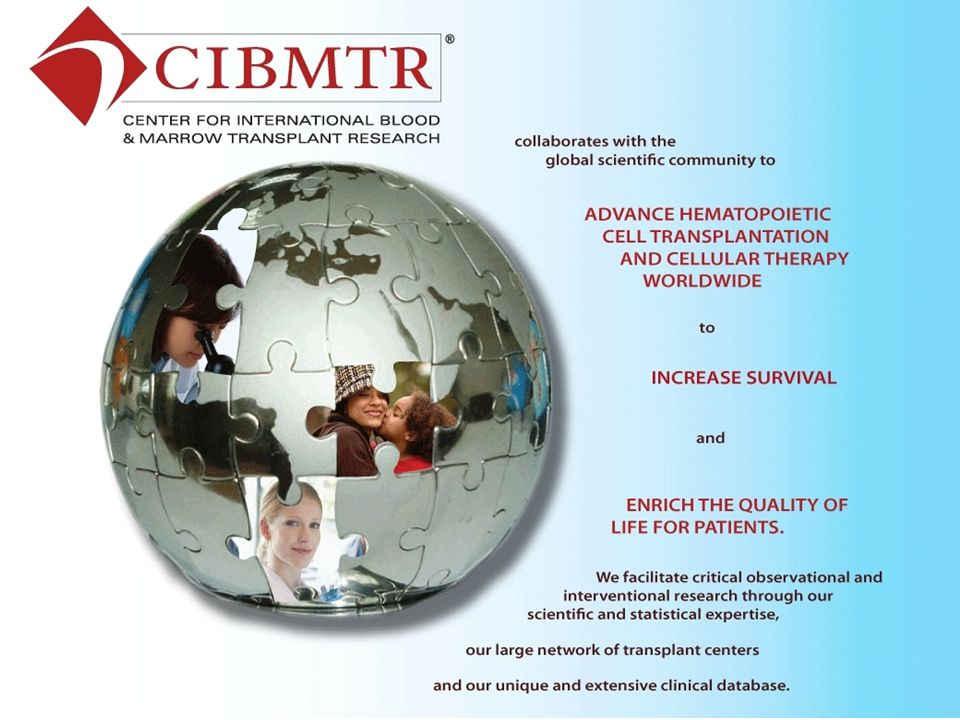 CENTER FOR INTERNATIONAL BLOOD & MARROW RESEARCH TRAINING & DEVELOPMENT