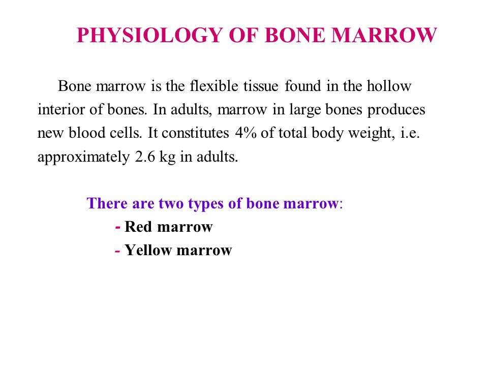  Red bone marrow consists of hematopoietic or blood forming tissue which produces white blood cells and red blood cells.