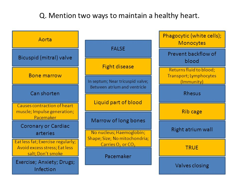 Q. Mention two ways to maintain a healthy heart.