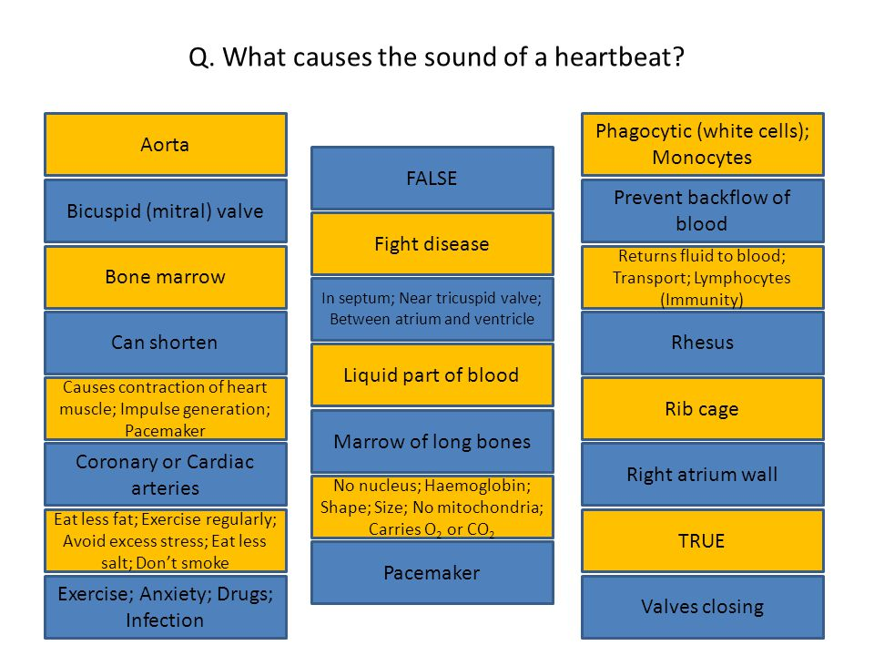 Q. What causes the sound of a heartbeat.