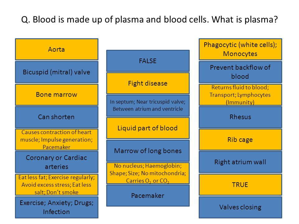 Q. Blood is made up of plasma and blood cells. What is plasma.