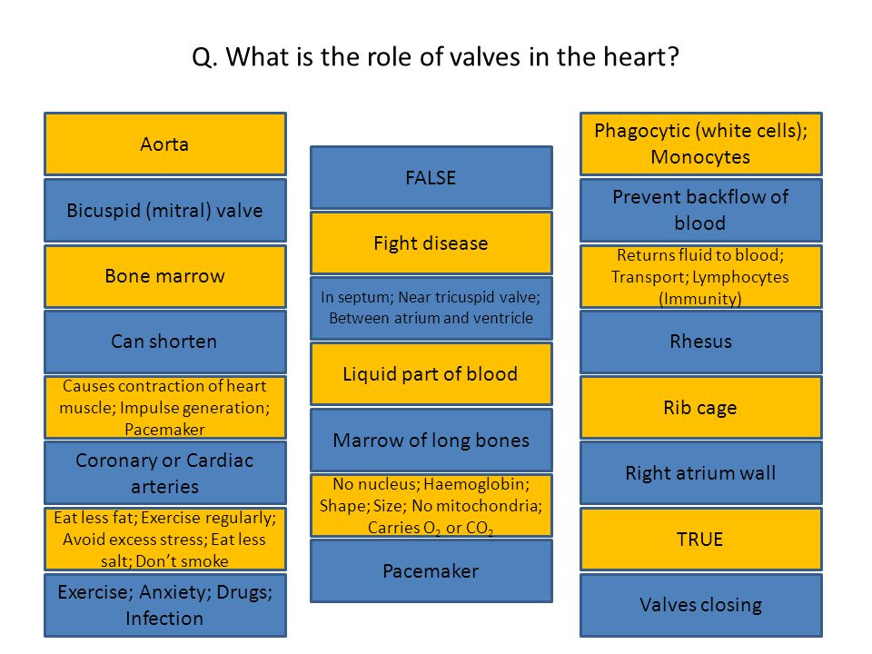 Q. What is the role of valves in the heart.