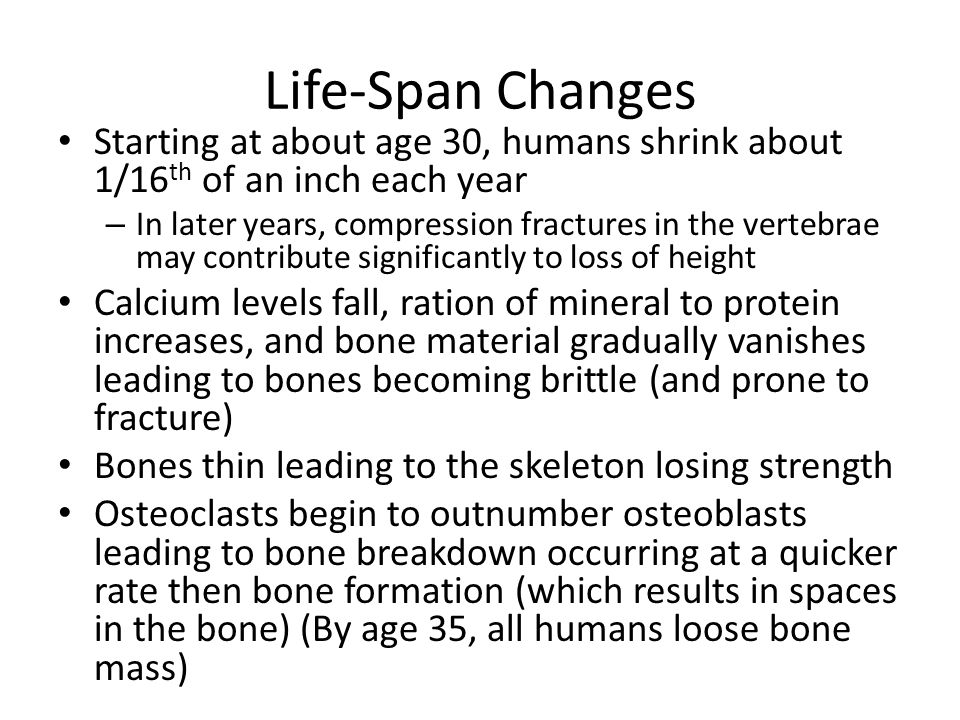Starting at about age 30, humans shrink about 1/16 th of an inch each year – In later years, compression fractures in the vertebrae may contribute significantly to loss of height Calcium levels fall, ration of mineral to protein increases, and bone material gradually vanishes leading to bones becoming brittle (and prone to fracture) Bones thin leading to the skeleton losing strength Osteoclasts begin to outnumber osteoblasts leading to bone breakdown occurring at a quicker rate then bone formation (which results in spaces in the bone) (By age 35, all humans loose bone mass)