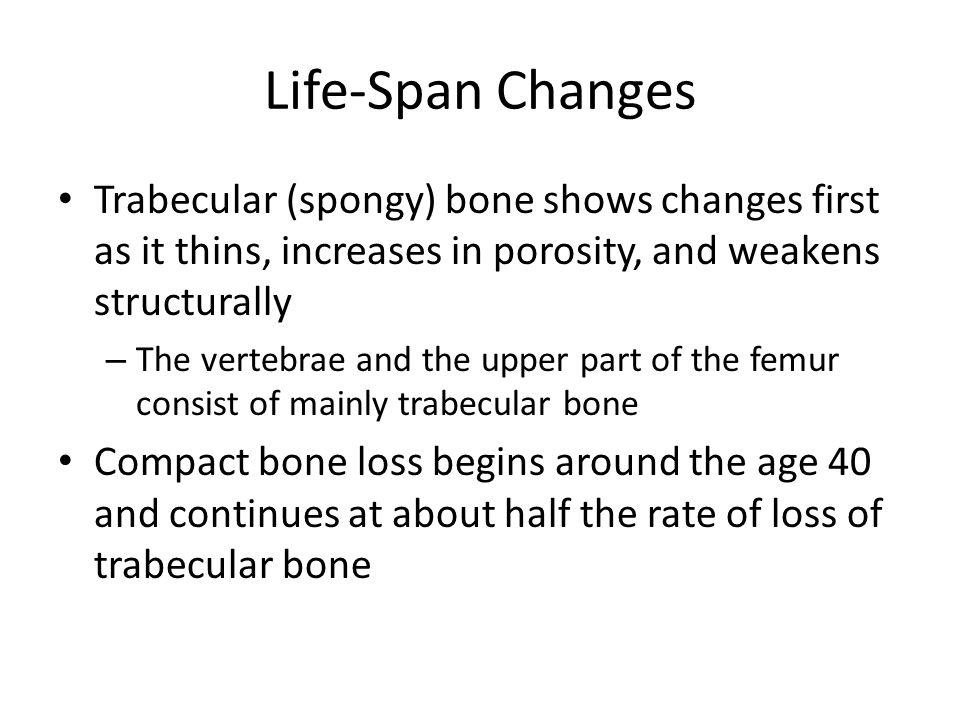 Life-Span Changes Trabecular (spongy) bone shows changes first as it thins, increases in porosity, and weakens structurally – The vertebrae and the upper part of the femur consist of mainly trabecular bone Compact bone loss begins around the age 40 and continues at about half the rate of loss of trabecular bone