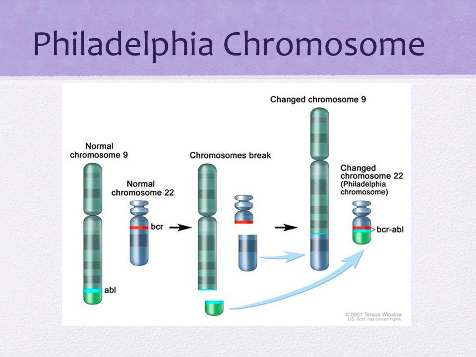 Philadelphia Chromosome