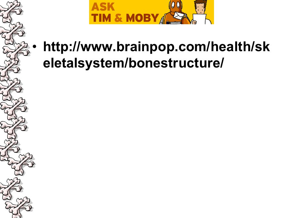 http://www.brainpop.com/health/sk eletalsystem/bonestructure/