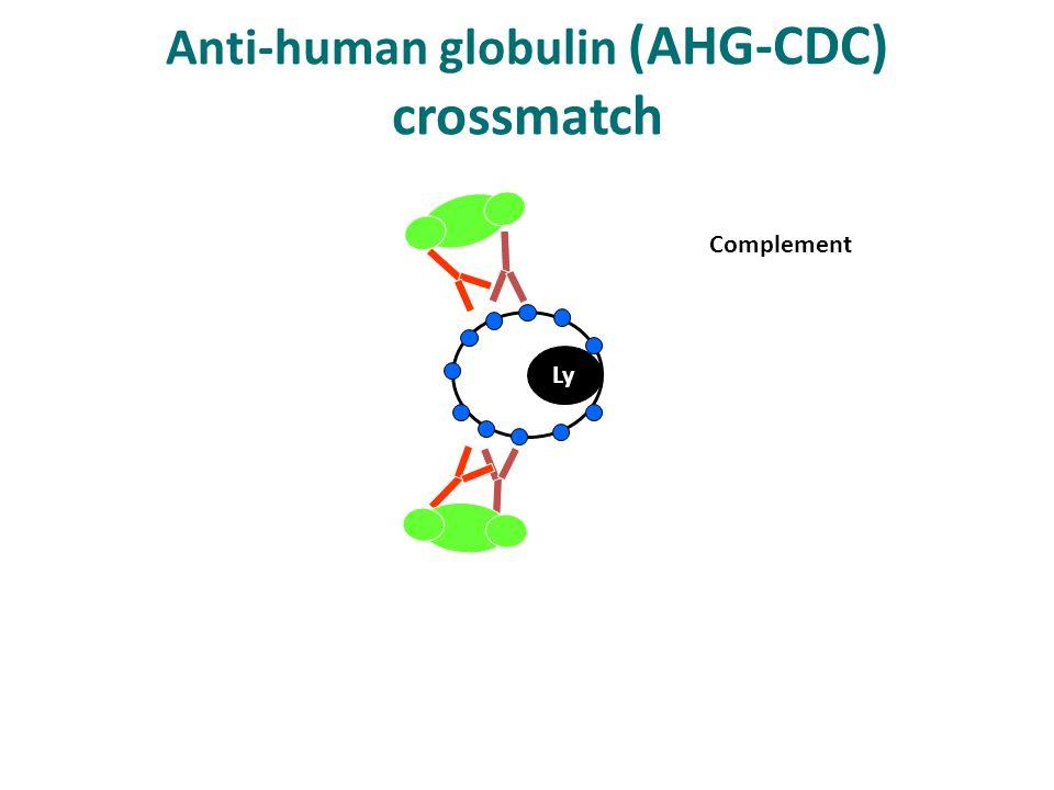 Ly Complement Anti-human globulin (AHG-CDC) crossmatch