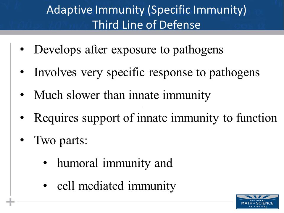 2 Adaptive Immunity (Specific Immunity) Third Line of Defense Develops after exposure to pathogens Involves very specific response to pathogens Much s
