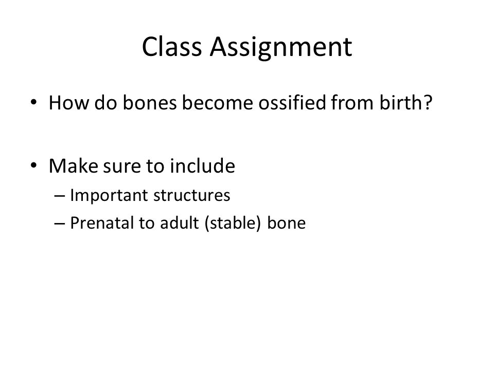 Class Assignment How do bones become ossified from birth.
