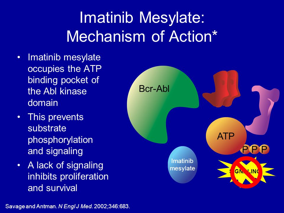 Imatinib Mesylate: Mechanism of Action* Imatinib mesylate occupies the ATP binding pocket of the Abl kinase domain This prevents substrate phosphoryla
