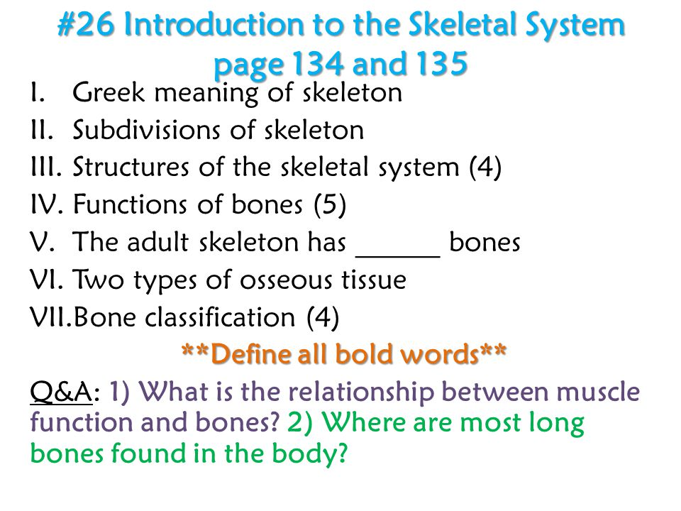 #26 Introduction to the Skeletal System page 134 and 135 I.Greek meaning of skeleton II.Subdivisions of skeleton III.Structures of the skeletal system (4) IV.Functions of bones (5) V.The adult skeleton has ______ bones VI.Two types of osseous tissue VII.Bone classification (4) **Define all bold words** Q&A: 1) What is the relationship between muscle function and bones.