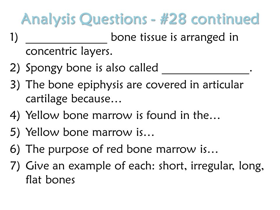 Analysis Questions - #28 continued 1)______________ bone tissue is arranged in concentric layers.