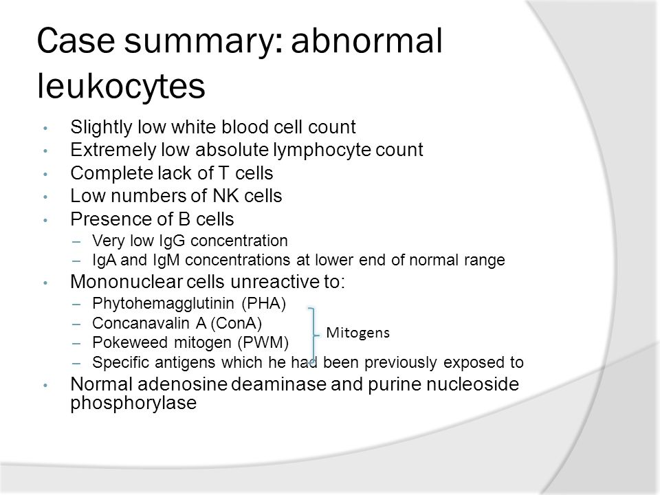 Case summary: abnormal leukocytes Slightly low white blood cell count Extremely low absolute lymphocyte count Complete lack of T cells Low numbers of NK cells Presence of B cells – Very low IgG concentration – IgA and IgM concentrations at lower end of normal range Mononuclear cells unreactive to: – Phytohemagglutinin (PHA) – Concanavalin A (ConA) – Pokeweed mitogen (PWM) – Specific antigens which he had been previously exposed to Normal adenosine deaminase and purine nucleoside phosphorylase Mitogens
