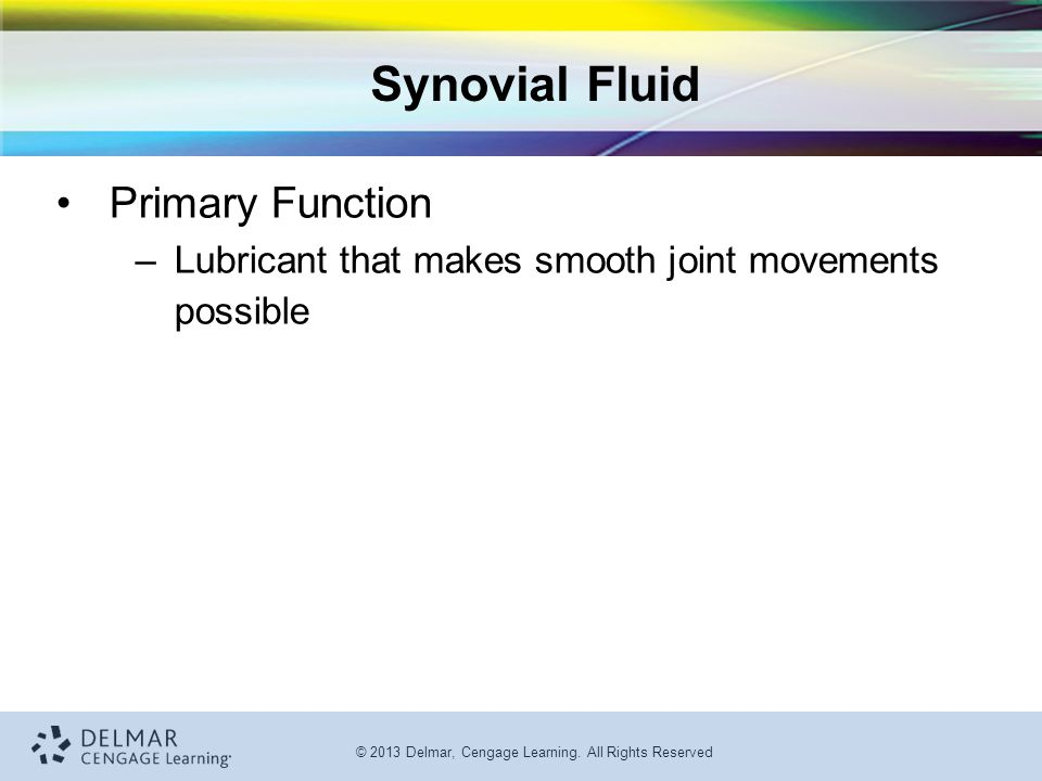 © 2013 Delmar, Cengage Learning. All Rights Reserved Synovial Fluid Primary Function –Lubricant that makes smooth joint movements possible