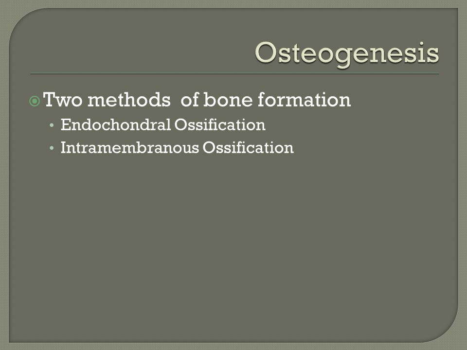  Endochondral Ossification Ossification from a cartilage template  Intramembranous Ossification  Ossification in the absence of a cartilage template