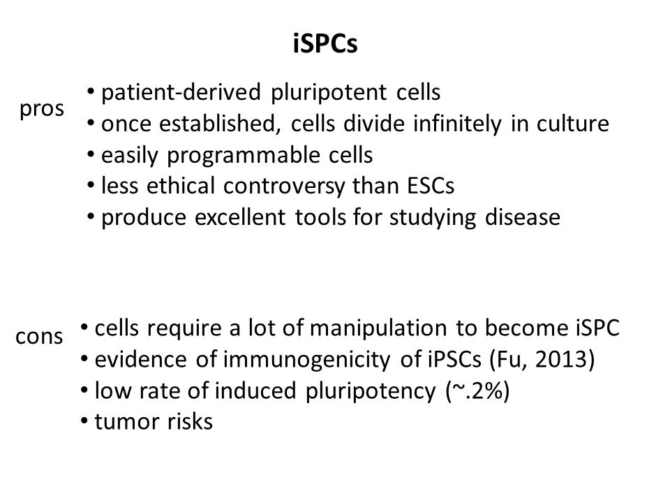 iSPCs pros cons patient-derived pluripotent cells once established, cells divide infinitely in culture easily programmable cells less ethical controversy than ESCs produce excellent tools for studying disease cells require a lot of manipulation to become iSPC evidence of immunogenicity of iPSCs (Fu, 2013) low rate of induced pluripotency (~.2%) tumor risks