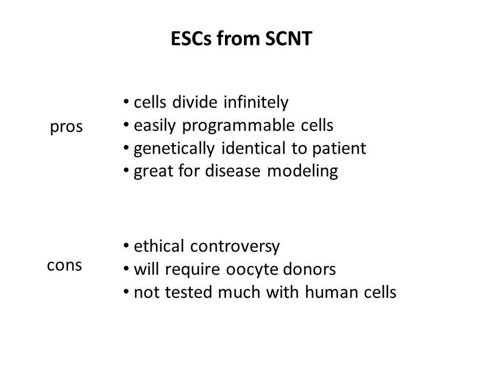 ESCs from SCNT pros cons cells divide infinitely easily programmable cells genetically identical to patient great for disease modeling ethical controversy will require oocyte donors not tested much with human cells