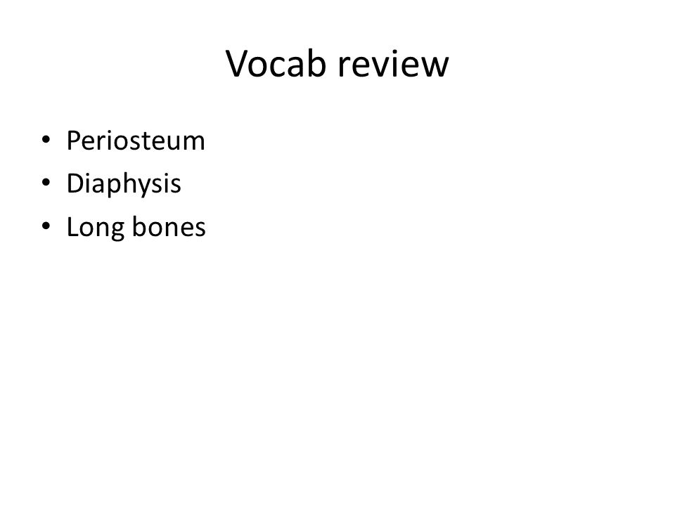Vocab review Periosteum Diaphysis Long bones