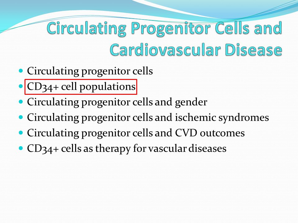 Circulating progenitor cells CD34+ cell populations Circulating progenitor cells and gender Circulating progenitor cells and ischemic syndromes Circulating progenitor cells and CVD outcomes CD34+ cells as therapy for vascular diseases