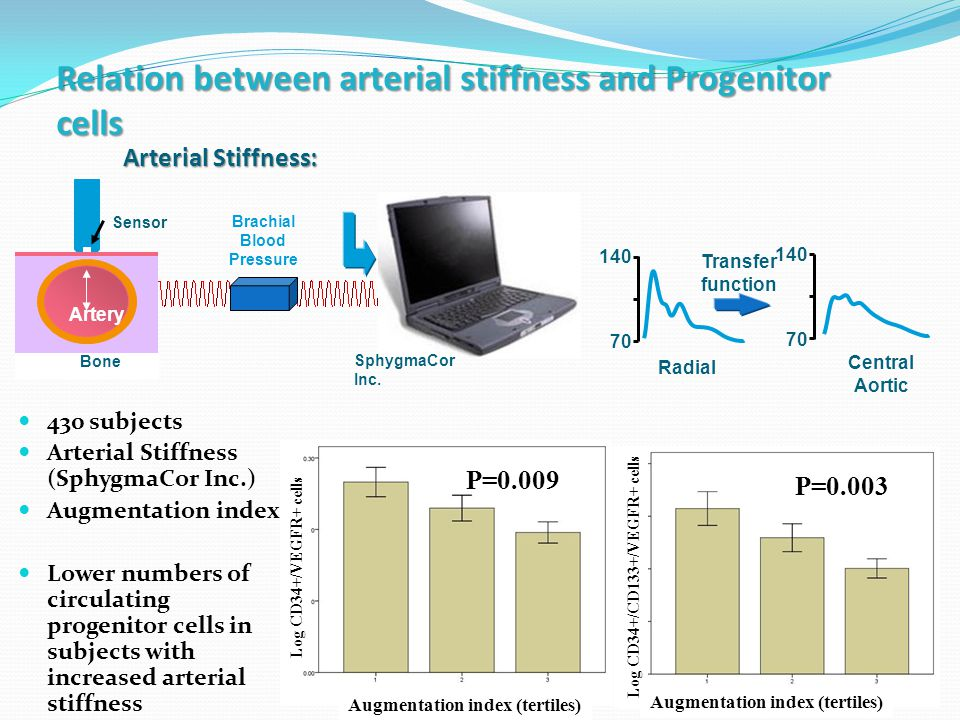 21 Relation between arterial stiffness and Progenitor cells P=0.001 Log CD34+/CD133+/VEGFR+ cells Augmentation index (tertiles) Log CD34+/VEGFR+ cells P=0.009 P=0.003 430 subjects Arterial Stiffness (SphygmaCor Inc.) Augmentation index Lower numbers of circulating progenitor cells in subjects with increased arterial stiffness Bone Artery Sensor Brachial Blood Pressure SphygmaCor Inc.