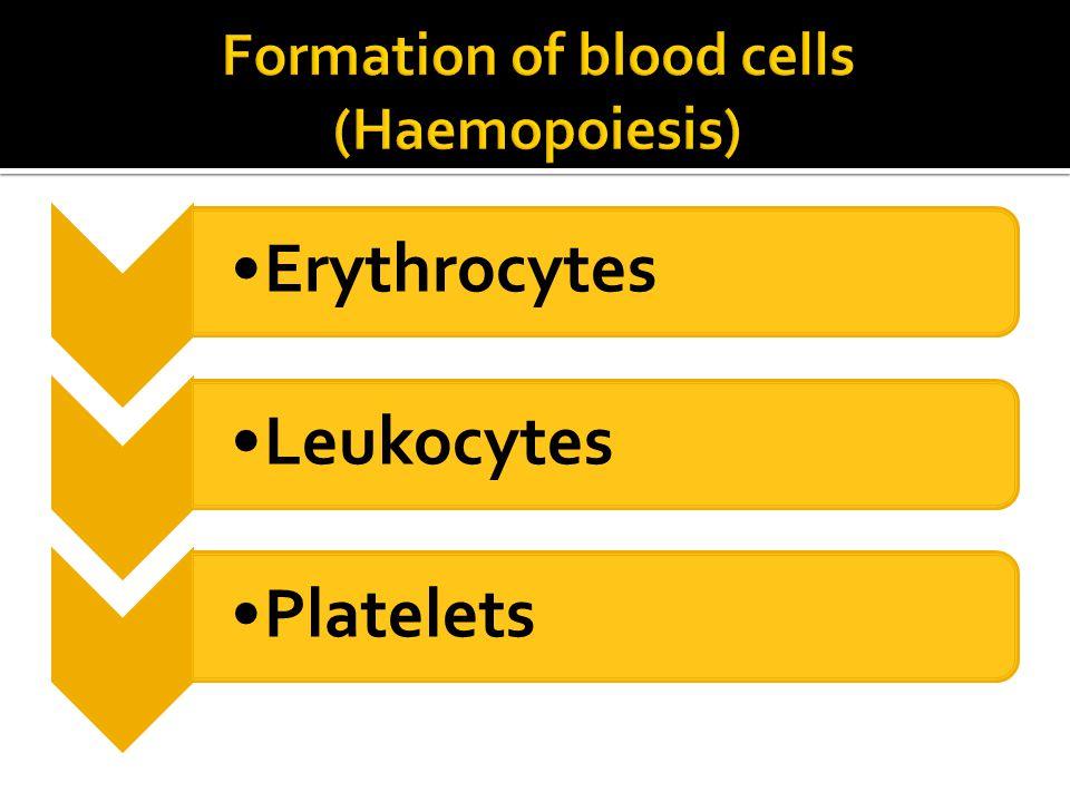 ErythrocytesLeukocytesPlatelets